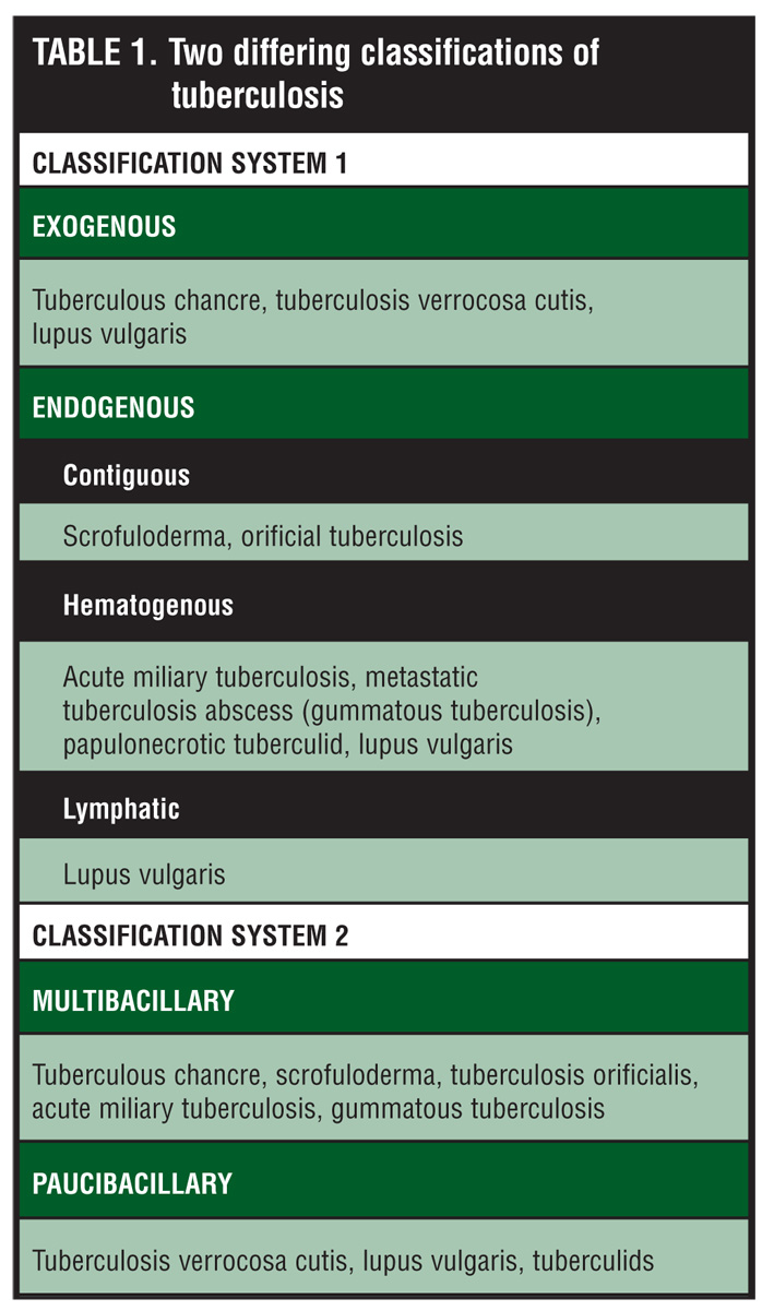 Literature Review On Tuberculosis