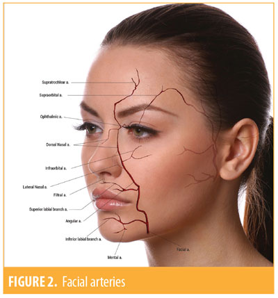Evaluation and Proportion in Nasal Filling with Hyaluronic Acid