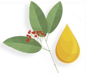 plaquenil precio farmacias del ahorro